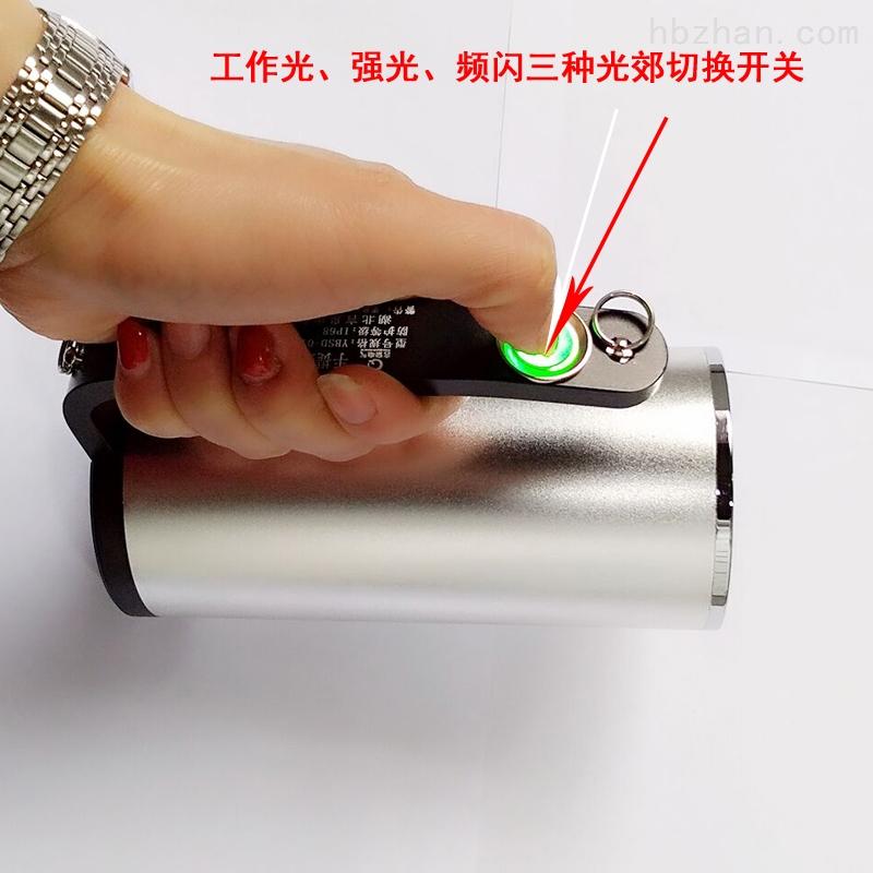 安全工作灯RJW7101/LT手提式探照灯