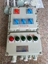 防爆照明配电箱BXM51-8/25/K125