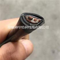 ZR-DJYVRP2-22-1*2*1.5钢带铠装计算机电缆