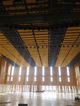 青岛室内比赛馆回声降噪可以用空间吸音体