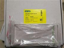 Bio-Rad伯乐GT Gel Tray紫外凝胶盘1704426