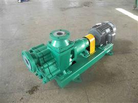 氟塑料自吸泵65FZB-30L
