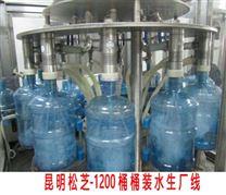 云南桶装水生产线整套设备价位在多少