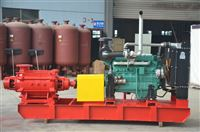 小型柴油机应急消防泵组