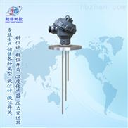 多點電極液位控製-多點電極液位控製儀表