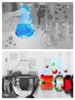 植物線粒體膜蛋白提取試劑盒