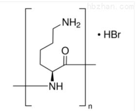 Poly-L-lysine  多聚L-赖氨酸 细胞培养