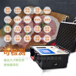 FT-B12肉类新鲜度检测仪