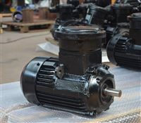 YBX3-112M-2(4KW)立式防爆电机