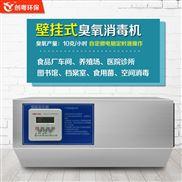 創粵CYA-B 10g壁掛式食品廠臭氧消毒機 工業