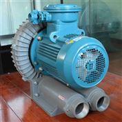 FB-10石油天然气专用7.5KW防爆旋涡气泵