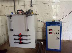 100克电解法二氧化氯发生器