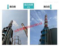 晋煤明水化工2*130锅炉烟气脱白项目