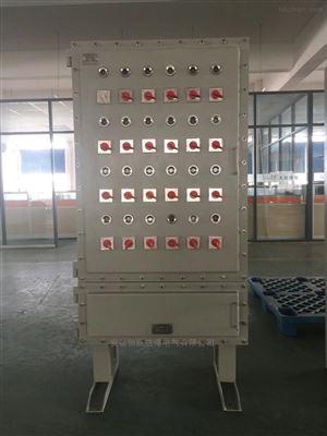 19回路带总开防爆照明开关箱BXM53室内挂式