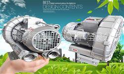 单相高压气泵-环形风机