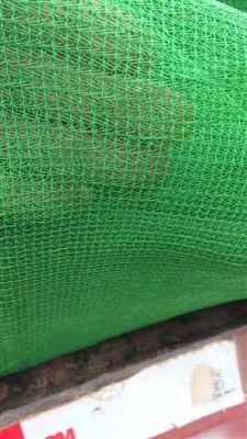 天津绿色2000目防尘盖土网