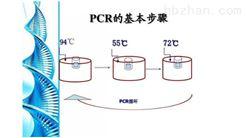 鮑球狀病毒PCR檢測試劑盒