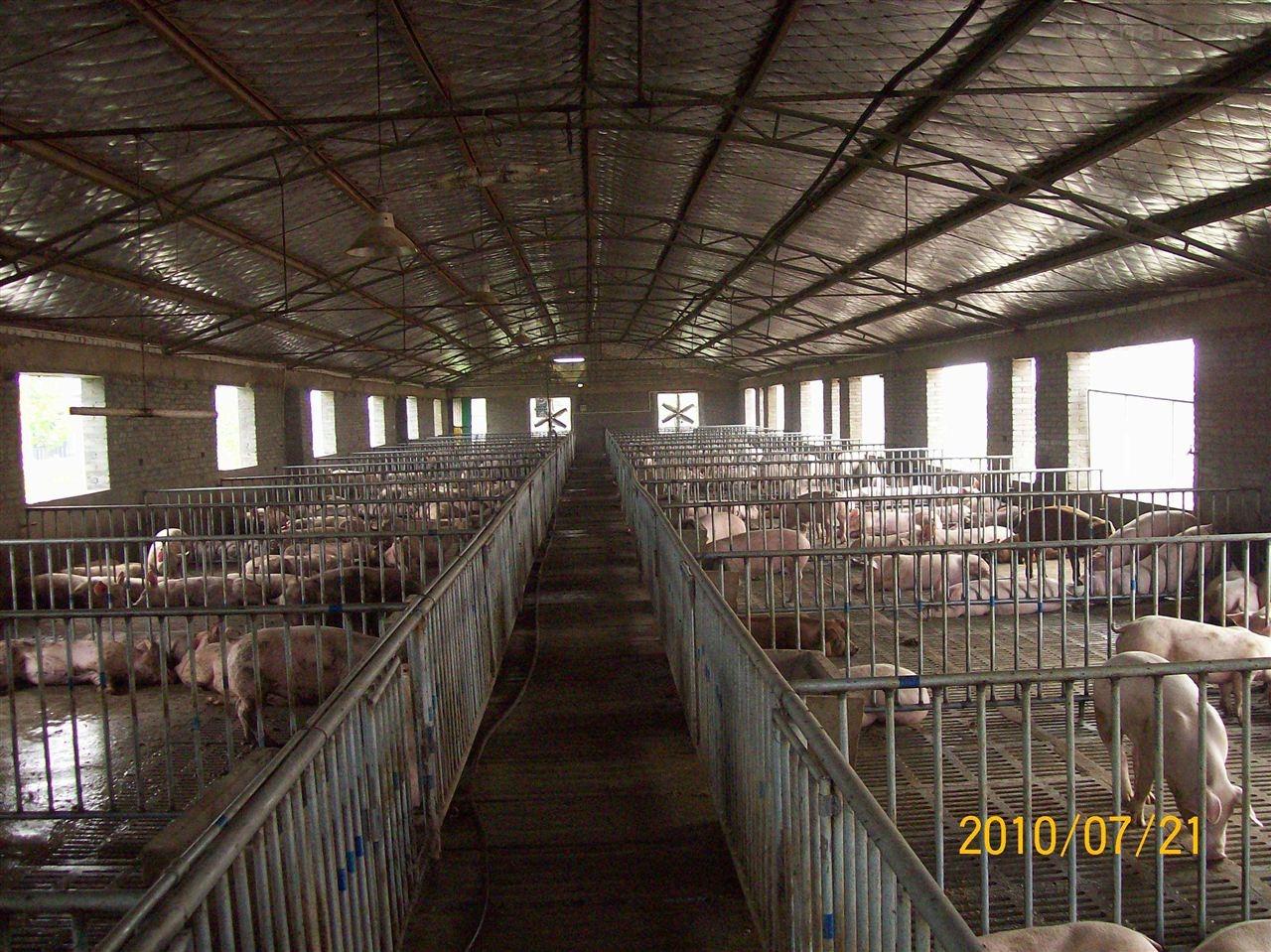 眉山农村猪场废水处理设备