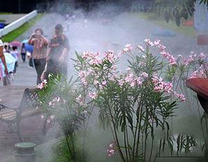 园林自动浇花降温灌溉喷雾