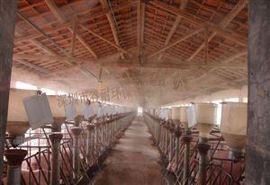 河南郑州养猪场喷雾降温消毒设备