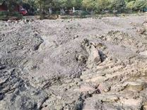 水生态修复污泥脱水剂