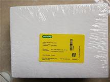 Bio-Rad伯乐超厚转印滤纸15x20cm 1703960