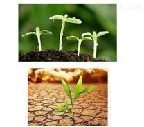 深圳种植土检测单位在哪