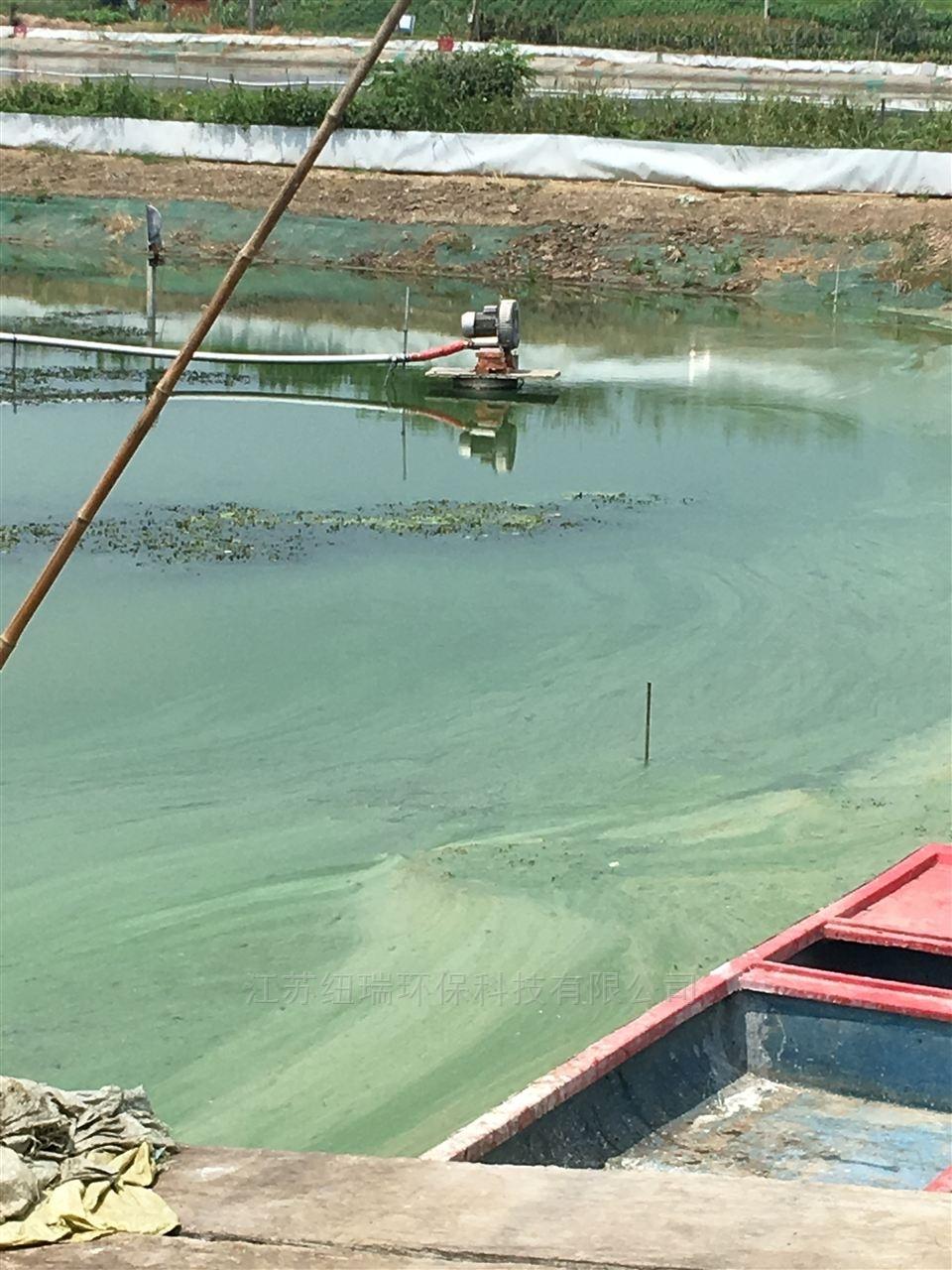 国内水产养殖专用高压风机