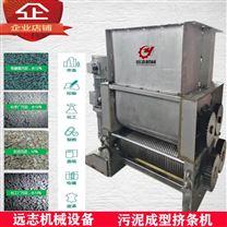 污泥挤条机污泥烘干输送设备厂家直销定做