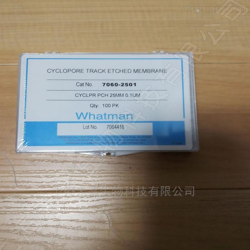 沃特曼whatman聚碳酸酯膜 pc膜孔径0.1um