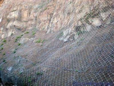 主防石坠落主动边坡防护网