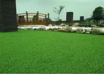 天津人造草皮厂家