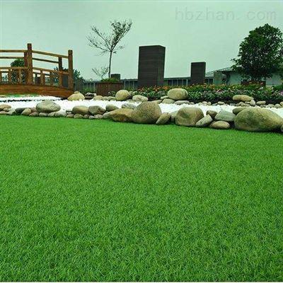 塑料仿真草坪