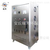 山東 濰坊廠家定製生產小型臭氧發生器