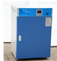立式電熱恒溫培養箱