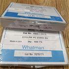 whatman聚碳酸酯膜 聚酯膜孔径5.0um