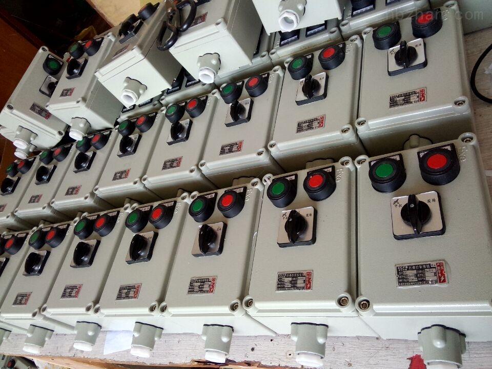 bzc51-A2D2G远程控制防爆操作柱
