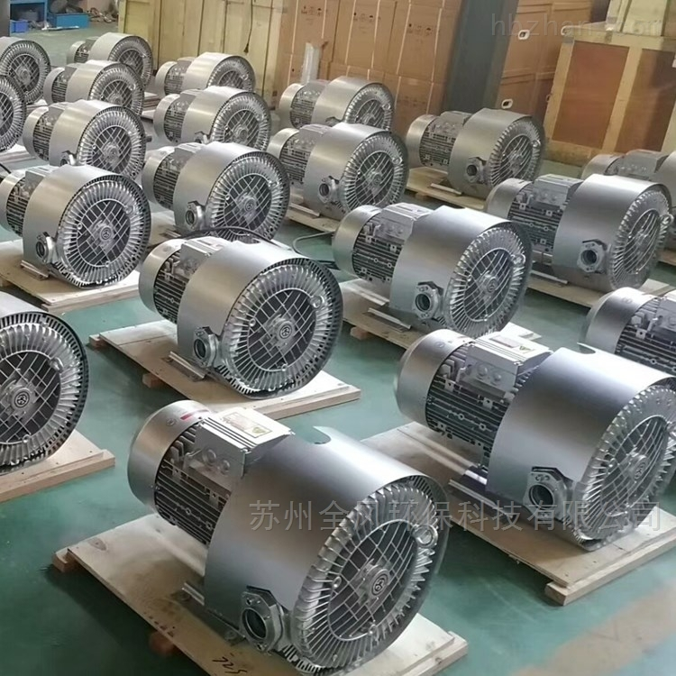 RB 920双叶轮旋涡气泵