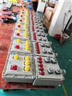 BXX52-IIB防爆电源插座箱、下进下出线
