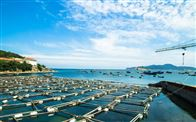 OWL-SMART-M1智慧渔业水产养殖环境监测系统