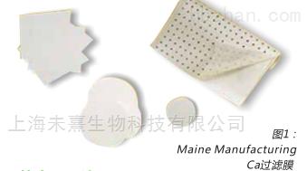 意大利gvs醋酸纤维素过滤膜0.45um孔径