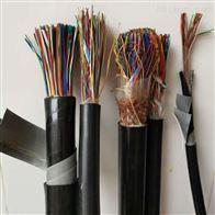 ZRC-HYA53阻燃通信电缆厂家规格书