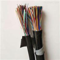 WDZ-HYA23低烟无卤通信电缆品牌