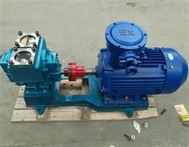 65 YHCB-30上海YHCB圓弧型齒輪油泵