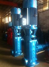 40LG12-15*8LG-B型立式向日葵视频app下载app下载離心泵