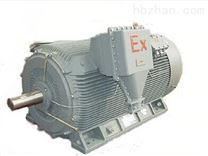 YB3低压大功率防爆电机_三相异步电动机