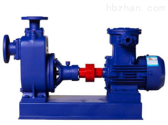200CYZ-A-63自吸油泵