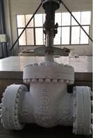 DZ941Y电动低温法兰闸阀