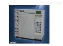 SP-2100A型气相色谱仪