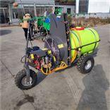 小型自走式风送果园喷雾机 果树打药机厂家